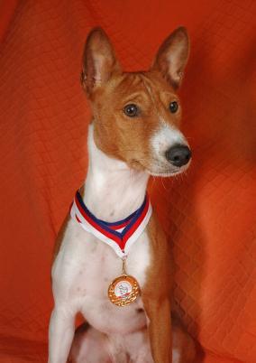 Gambo s medailí