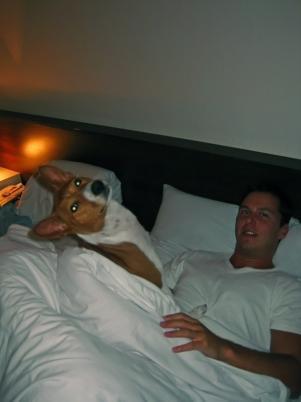 Gambo v posteli