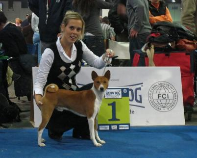 Spokojený pes i panička